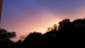 Photo taken approx. 06:30 UTC in Dresden, Germany (around sunset).